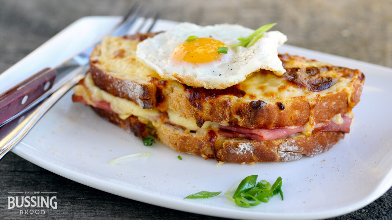 bussing-brood-brustiek-wit-croque-madam